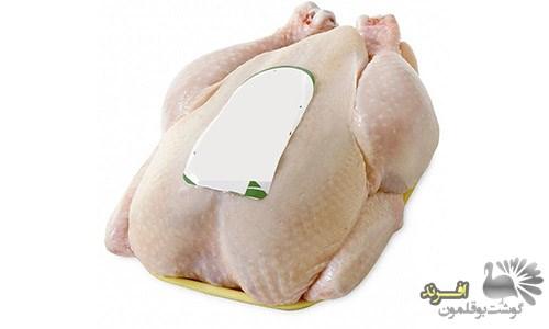 خرید گوشت بوقلمون ترکیه