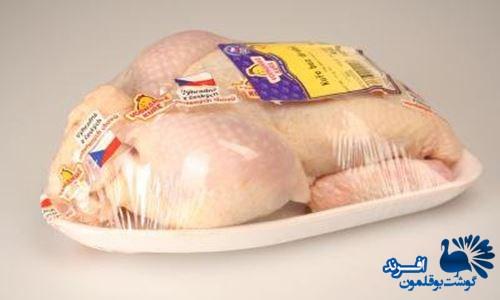 قیمت گوشت بوقلمون پرورشی