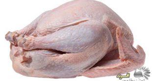 انواع بسته بندی گوشت بوقلمون