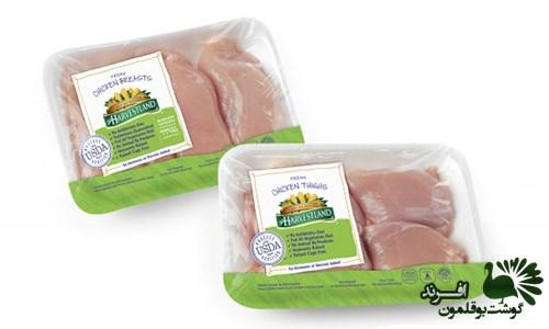 مرکز خرید گوشت بوقلمون فراوری